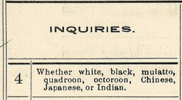 The race box from the 1890 US Census, asking 'Whether white, black, mulatto, quadroon, octoroon, Chinese, Japanese, or Indian.'
